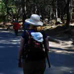 Carrying Zoe at Yosemite National Park